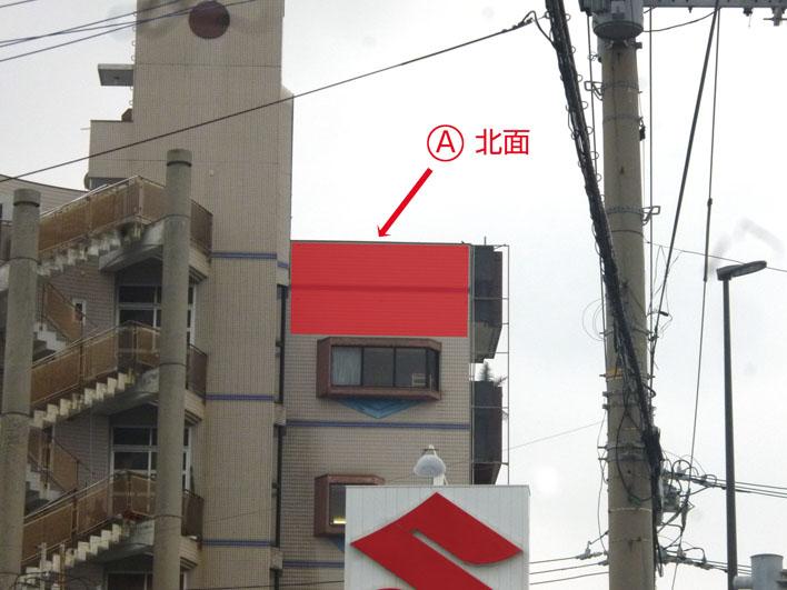 琉球リアル本社 壁面1